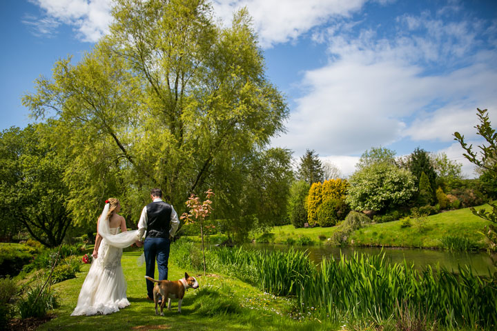 Dog Friendly Weddings